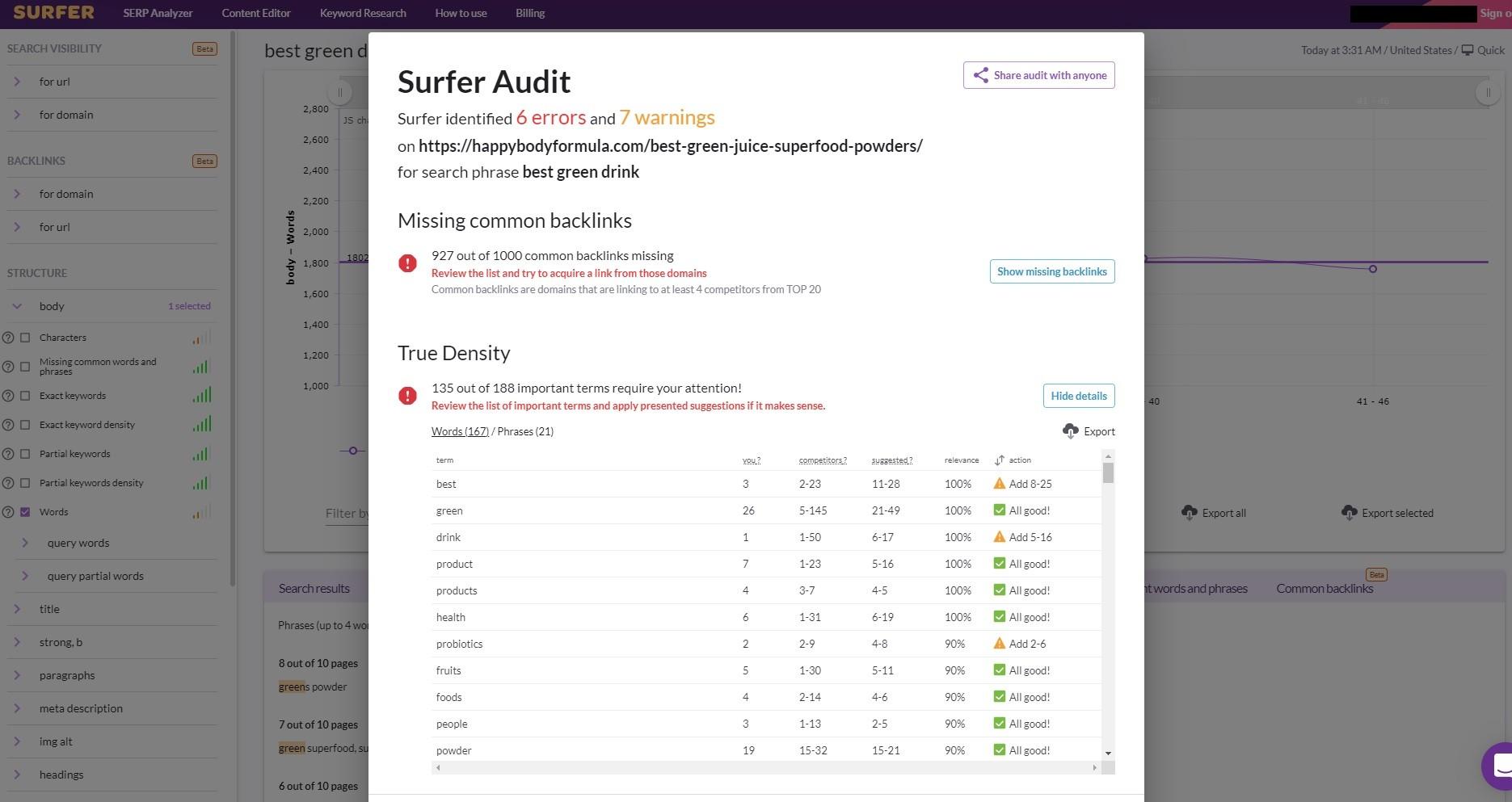 Surfer Audit